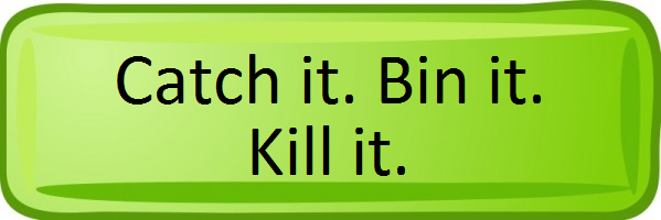 Catch it. Bin it. Kill it.